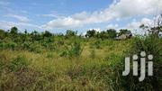2 Acres Mwishowalami Freehold Clean Beach Line 2 13 Mill Per Acre | Land & Plots For Sale for sale in Kwale, Kinondo