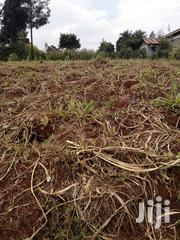 1 Acre, Entrance Touching Tarmac. Ideal For Home Building, Dairy Farm | Land & Plots For Sale for sale in Kiambu, Githunguri