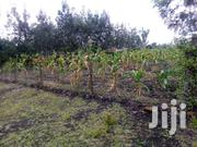 Land For Sale | Land & Plots For Sale for sale in Kajiado, Oloolua