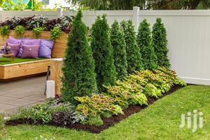 Evannos Landscaping Services