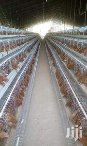 1280 Chicken Cages | Farm Machinery & Equipment for sale in Nairobi, Nairobi Central