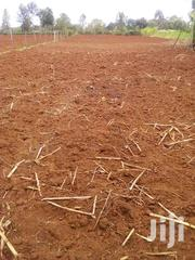 KITALE LAND FOR SALE | Land & Plots For Sale for sale in Trans-Nzoia, Cherangany/Suwerwa