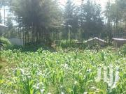 1 Acre For Sale | Land & Plots For Sale for sale in Laikipia, Igwamiti
