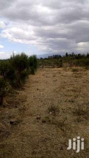 One Acre Land And A House For Sale In Ol Pejeta Conservancy, Nanyuki | Land & Plots For Sale for sale in Laikipia, Thingithu