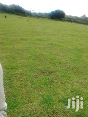 1/2 An Acre With Title Deed. | Land & Plots For Sale for sale in Laikipia, Igwamiti