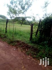 Plot Along Kamagut Sambut Road 300m From Kamagut Primary For Sale | Land & Plots For Sale for sale in Uasin Gishu, Kamagut