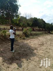 Prime Plots For Sale   Land & Plots For Sale for sale in Machakos, Masinga Central