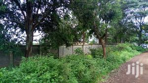 A 50 By 100 Plot For Sale Im Ruiru 2km Behind Rainbow Resort