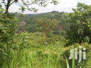 Land In Murang'a,10 Acres. Prime Land 850,000 Per Acre | Land & Plots For Sale for sale in Busia, Bunyala West (Budalangi)