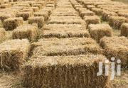 Hay For Sale | Feeds, Supplements & Seeds for sale in Laikipia, Nanyuki