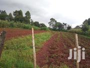 Land For Sale | Land & Plots For Sale for sale in Trans-Nzoia, Sitatunga