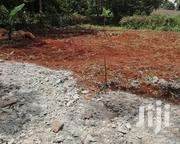 Plot 50 By 100 With Ready Title Deed For Sale | Land & Plots For Sale for sale in Kiambu, Kihara