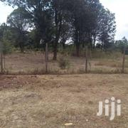 Karen Ndege Rd 2 Plots Each 1 Acre With Title Ready Residential | Land & Plots For Sale for sale in Nairobi, Nairobi Central