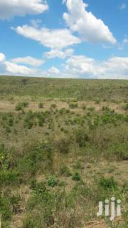 55 Acres On Sale In Soin Kericho County   Land & Plots For Sale for sale in Kericho, Soin (Sigowet)