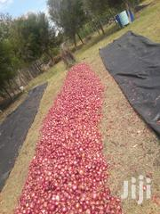 Red Bulb Onions. | Feeds, Supplements & Seeds for sale in Nyeri, Naromoru Kiamathaga