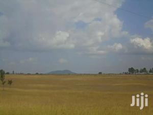 10 Acres Land In Naromoru For Sale