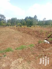 1/8th Acre Residential Plots,Ntima/Igoki | Land & Plots For Sale for sale in Meru, Ntima East