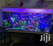 Aquarium | Other Animals for sale in Nairobi, Nairobi Central