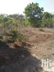 1/2 An Acre Land For Sale At Diani Beach Row 3 | Land & Plots For Sale for sale in Kwale, Kinondo