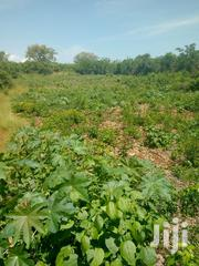 Diani Plots For Sale | Land & Plots For Sale for sale in Nairobi, Nairobi Central