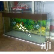 Aquarium | Pet's Accessories for sale in Nairobi, Nairobi Central