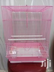 Bird Cage and Food | Pet's Accessories for sale in Nairobi, Nairobi Central