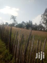 2 Acres Ruirii Kieni Constuency Nyeri County On Sale | Land & Plots For Sale for sale in Nyeri, Rware