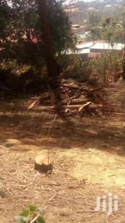 Firewood | Building Materials for sale in Kajiado, Ngong