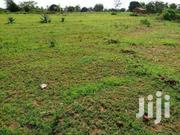 Quick Sale 40*80 Plots At 200k | Land & Plots For Sale for sale in Busia, Bunyala West (Budalangi)
