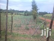 1/4 Acre On Sell Mumias Mwitoti | Land & Plots For Sale for sale in Kakamega, Mumias Central