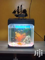 Aquarium At Good Price | Pet's Accessories for sale in Nairobi, Pangani