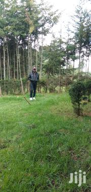 Private Drivers   Driver CVs for sale in Nyandarua, Central Ndaragwa