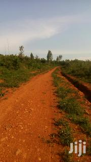 10 Acres Bondo Ajigo Sub Location | Land & Plots For Sale for sale in Siaya, North Sakwa (Bondo)