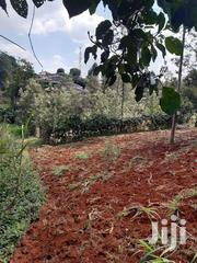Two 1/8 Plots On Sale In Muchatha Right Behind Guango Estate | Land & Plots For Sale for sale in Kiambu, Muchatha