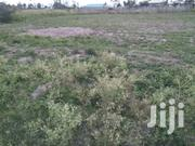 For Sale 50/100 Plot Touching Tamarc In Imperial Near Mzee Wa Nyama | Land & Plots For Sale for sale in Nakuru, Nakuru East