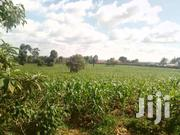 Lavington 1.25acres At 300m Titled Ideal For Apartments | Land & Plots For Sale for sale in Nairobi, Kileleshwa