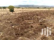 Runda Mumwe 1/2 Acre At 32m Titled | Land & Plots For Sale for sale in Nairobi, Karura