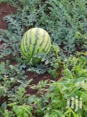 Watermelons | Meals & Drinks for sale in Kiambu, Ngoliba