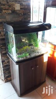 Imported Aquarium 60ltres | Fish for sale in Nairobi, Nairobi Central