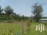 Fifteen Acres In Bungoma Sangalo | Land & Plots For Sale for sale in Bungoma, East Sang'Alo