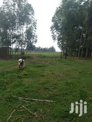 Eighteen Acres In Kakamega Okalo | Land & Plots For Sale for sale in Bungoma, East Sang'Alo