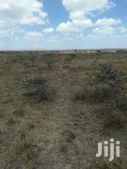 Land For Sale   Land & Plots For Sale for sale in Kajiado, Kaputiei North