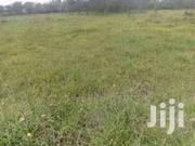 Iam Looking For A Plot To Buy In Mlolongo / Kiserian (NOT PAST) | Land & Plots For Sale for sale in Homa Bay, Mfangano Island