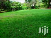 0.749 Acres Land For Sale | Land & Plots For Sale for sale in Nairobi, Nairobi Central