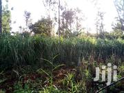I ACRE | Land & Plots For Sale for sale in Murang'a, Makuyu