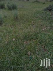 Off Nairutia Kariguini Next To Naituruchi Pri. School. | Land & Plots For Sale for sale in Nyeri, Mugunda