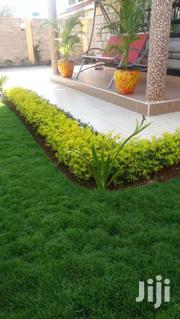 Home,Garden And Accessories | Garden for sale in Machakos, Syokimau/Mulolongo