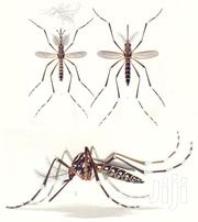 Mosquito Services | Other Services for sale in Nairobi, Kileleshwa