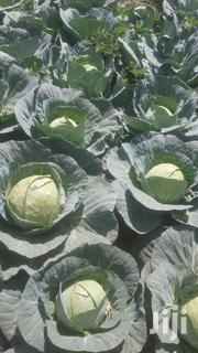 Cabbages For Sale | Feeds, Supplements & Seeds for sale in Kiambu, Kinale