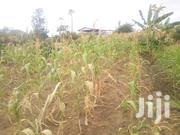 1/4 Plot Onsale Machakos -kathekakia Shopping Centre | Land & Plots For Sale for sale in Machakos, Machakos Central